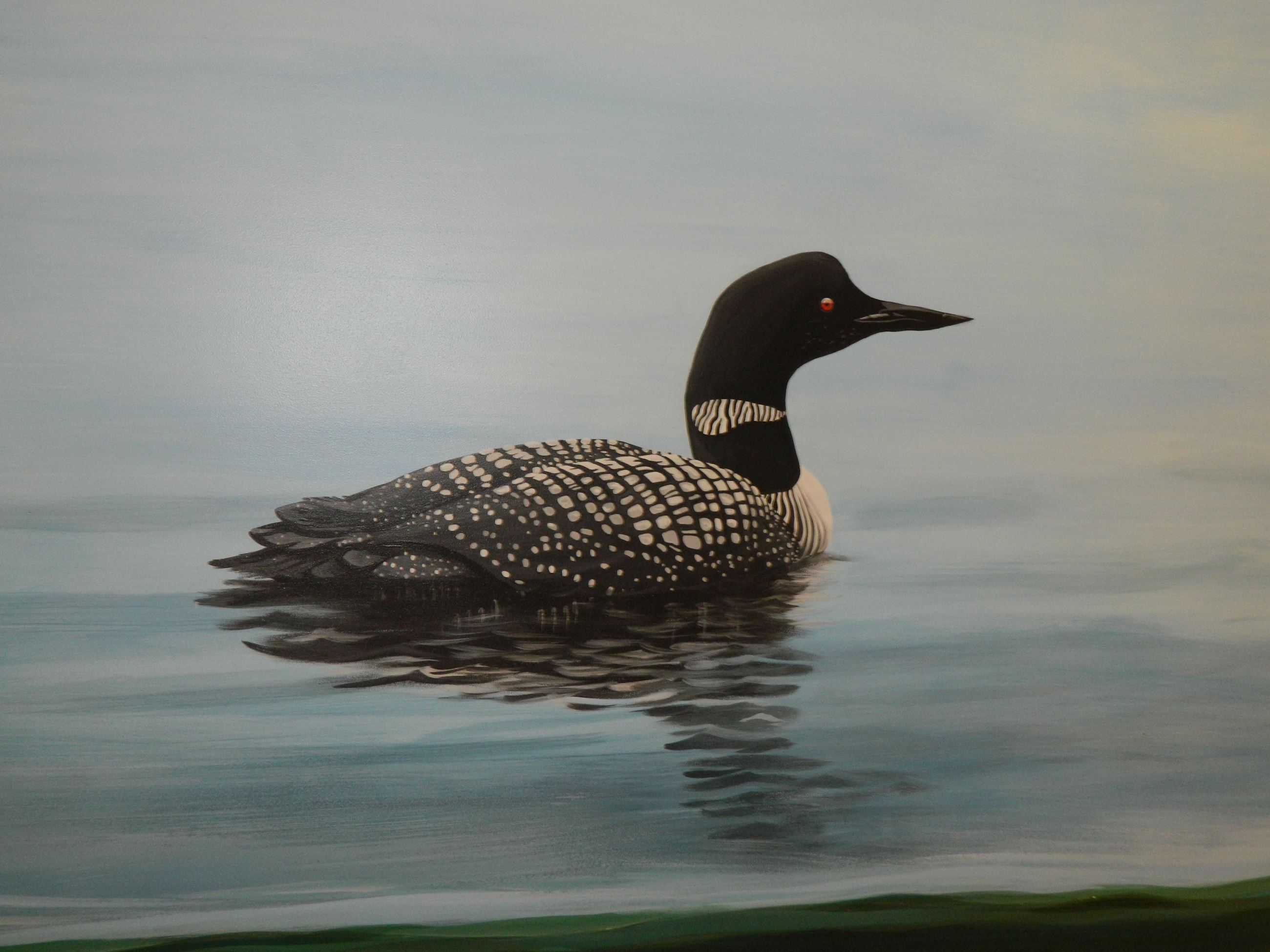 Loon painted on the Feature Wall